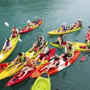 ~Guided Kayaking tour of Scenic Dalkey