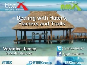 dealing-with-haters-and-flamers-and-trolls-veronica-james-1-638
