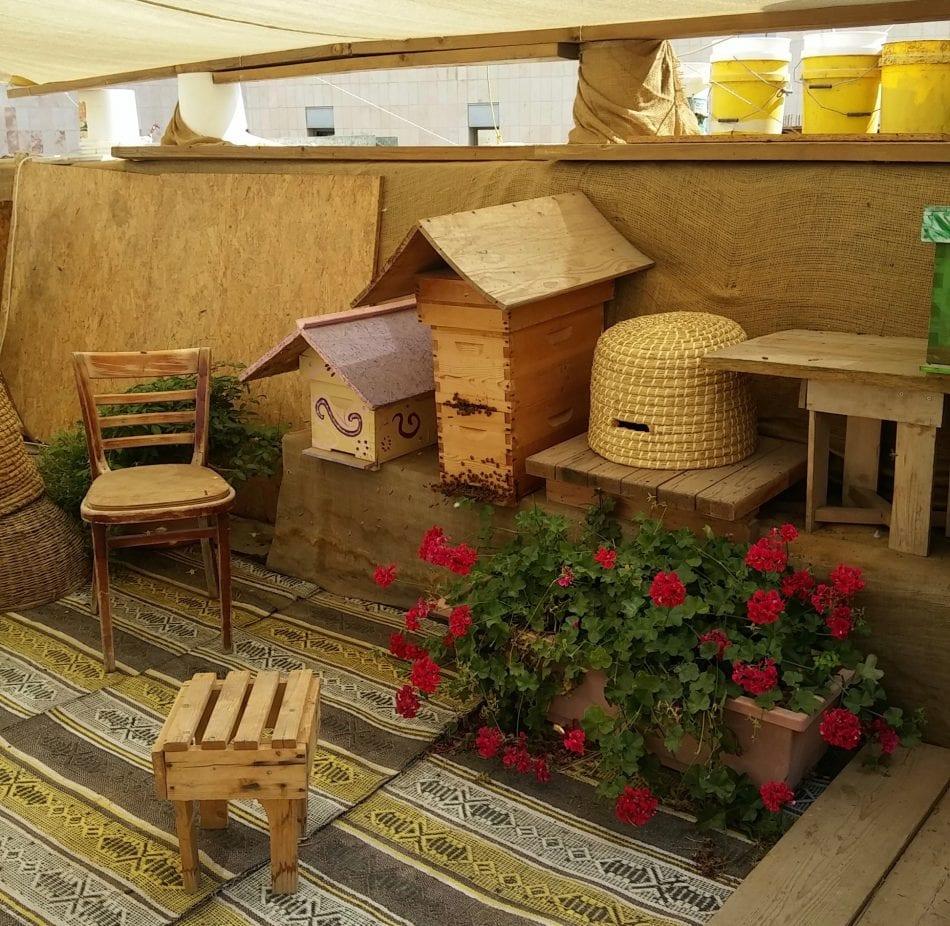 Bio-dynamically kept bees at The Mirpeset
