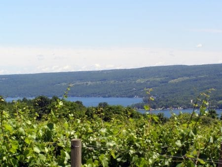 Things to do in Finger Lakes NY